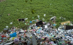 Ảnh môi trường bị ô nhiễm